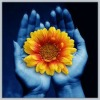 Flower_in_Hands